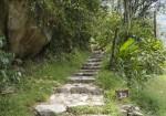 Trail to Machu Picchu from Machu Picchu Pueblo | Best of Peru Travel