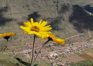 Pisac The Sacred Valley's Hidden Gem