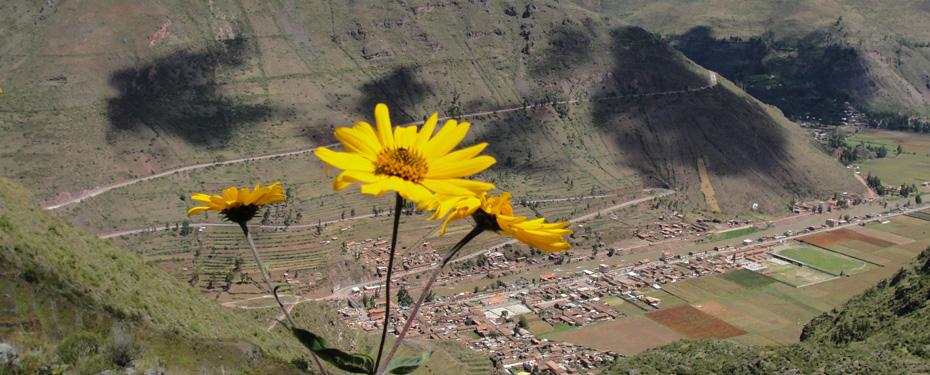 Pisac The Sacred Valley's Hidden Gem