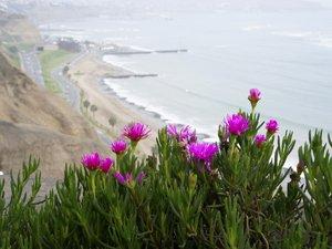 Miraflores coastline in Lima Peru