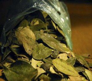 Coca leaf tea for preventing altitude sickness in Cusco in Peru!