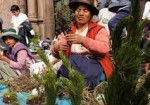 Christmas in Cusco