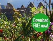 Machu Picchu guide free download
