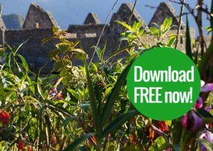 Machu Picchu guide free download