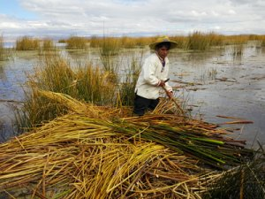 Man on Uros Floating Islands Lake Titicaca